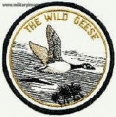the-wild-geese